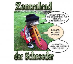 """Grafik mit freundlicher Genehmigung von """"Schroeder"""""""