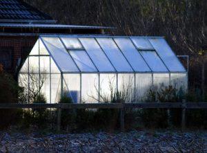 """Mist! Jetzt weiß ich selber nicht mehr, wie ich an dieser Stelle auf """"Glashaus"""" komme! Foto: Mario De Mattia / pixelio.de"""