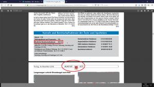 """Bildzitat (mit Markierungen) Screenshot Amtsblatt der Gemeinde Langenargen """"Montfort-Bote"""", Ausgabe vom 16. November 2018, S. 6"""