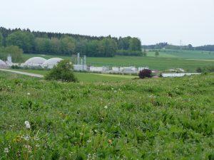 Energiepark Hahnennest bei Ostrach (Landkreis Sigmaringen): Fernblick auf die weit in die schützenswerte Landschaft hineingreifende Betonkrake. Foto: privat (März 2019)