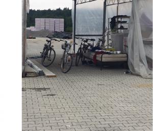 Auch dieses Foto entstand am 6. September 2019. Genau zu dieser Konstellation des im Freien stehenden Bettes gibt es eine Erklärung der Gärtnerei Knam, die im nächsten Artikel ausführlich wiedergegeben wird. Foto: Elke Krieg