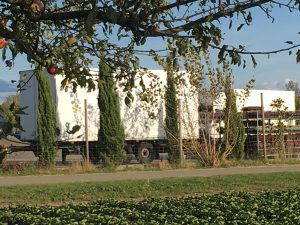 Noch mehr LKWs und Hänger auf dem Gelände bei der Kühlhalle der Gärtnerei Knam. Foto: Elke Krieg