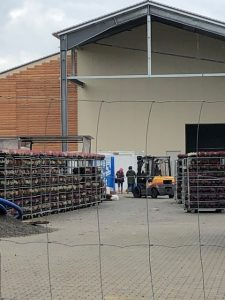 Stellagen mit Heidekraut, wie man sie aus Baumärkten & Co. kennt. Viel Arbeitsbetrieb auf dem Gelände am Sonntag, den 6. Oktober 2019. Foto: Elke Krieg