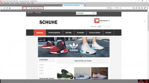 Bildzitat Screenshot www.fdp-spaichingen.de, dem auf der Homepage der Stadt Spaichingen gesetztem Link folgend
